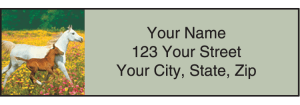 Horse Play Address Labels – click to view product detail page