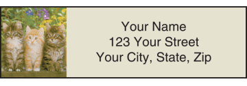 Kitty Review Address Labels – click to view product detail page