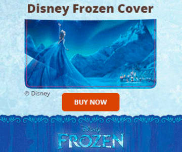 Disney's Frozen Checkbook Cover