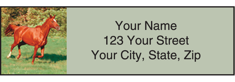 Enlarged view of Horse Play Address Labels
