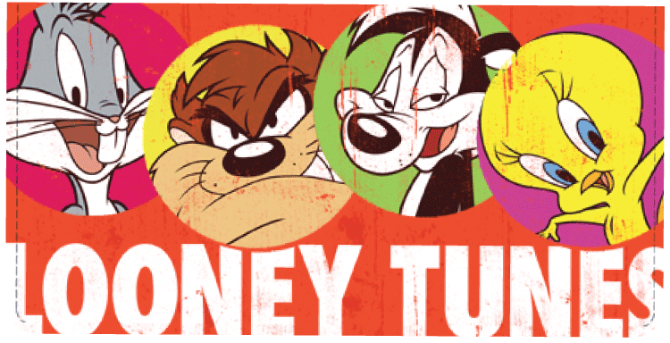Looney Tunes Checkbook Cover