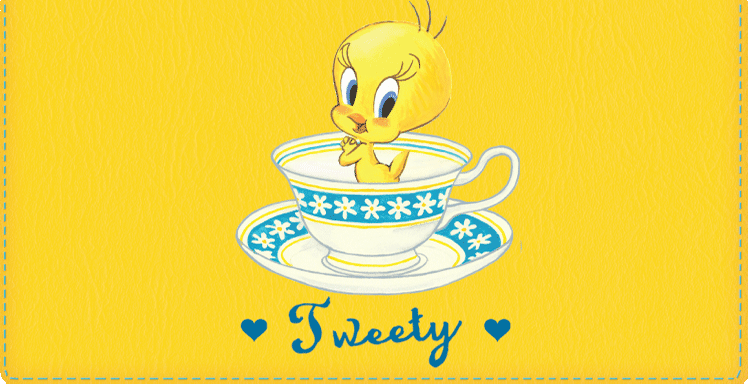 Totally Tweety Checkbook Cover