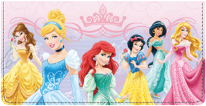 Disney Princess Checkbook Cover – click to view product detail page