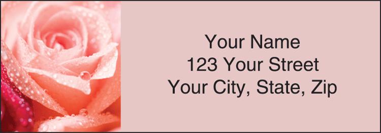 Roses Address Labels - Set of 210