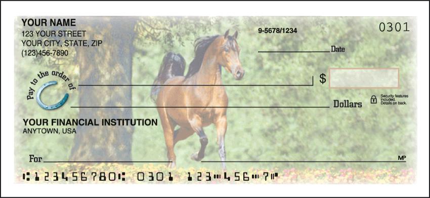 Horse Play Personal Checks - 1 Box - Duplicates