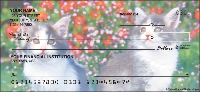 Kitty Review Animal Personal Checks - 1 Box - Duplicates
