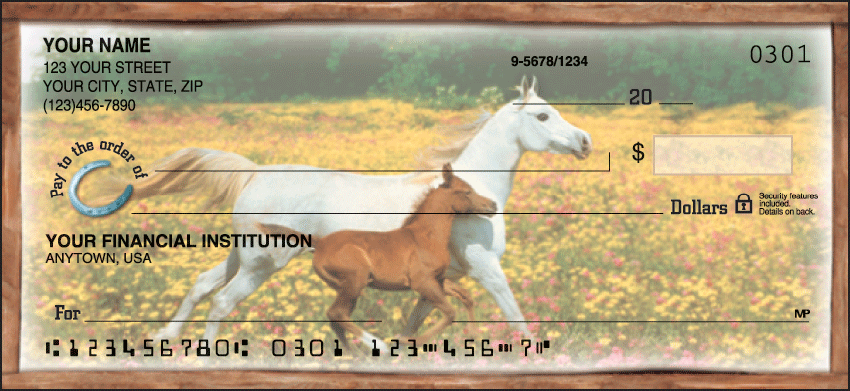 Horse Play Recreation Personal Checks - 1 Box - Duplicates